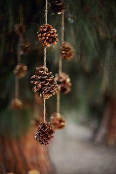 Simple pinecone hanging or Christmas decoration. Crafts DIY Pine Cone Crafts for Christmas which are a true expression of natural beauty - Saudos Christmas Minis, Christmas Photos, Winter Christmas, Christmas Time, Xmas, Minimal Christmas, Modern Christmas, Christmas Ideas, Christmas Backdrops