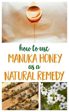 The medicinal benefits of manuka honey make it a smart product to keep in your kitchen cupboard or natural remedies toolkit. | natural living | healthy living
