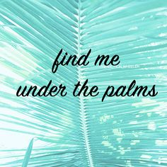 fine me under the palms quote