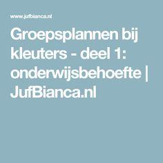 Groepsplannen bij kleuters - deel 1: onderwijsbehoefte | JufBianca.nl