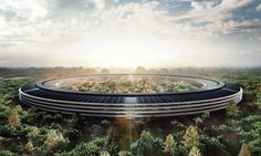 The Apple Doesn't Fall Far From the Tree: Considered one of the priciest and most complicated construction projects ever attempted by a private company, the self-contained Apple Campus 2 is expected to be complete in late 2016.