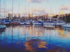 Gorgeous colours of Rushcutters Bay.