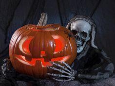 Tem festas temáticas de halloween, show com pegada Dub e até forrózinho de pé de serra.