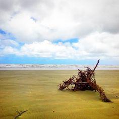 Sobre praias e desertos. Um lugar onde o Google nao vai. #abussolaquebrada #praia #beach #deserto #viajar #viagem #viajarfazbem #praiadeserta #mar #sea #ilovephoto