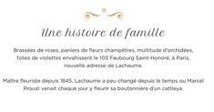 Proust's floris in Paris Web Paint, Marcel Proust, Paris, Math, Basket Of Flowers, Montmartre Paris, Math Resources, Paris France, Mathematics