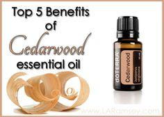 Cedarwood Essential Oil | http://www.laramsey.com/cedarwood-essential-oil/