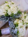 Roses Freesia and Dusty Miller - very cute.