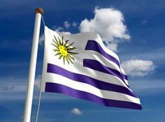La bandera más hermosa del mundo