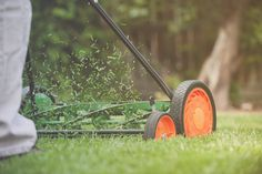 13 Things Your Landscaper Won't Tell You-Reader's Digest