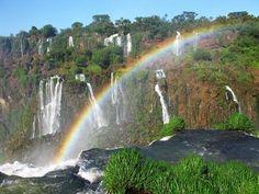 pino l -Brasile, Foz de Iguacu-  Recensioni dell'utente - TripAdvisor