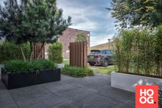 Moderne en strakke voortuin Beverly Hills, Planters, Sidewalk, Villa, Yard Ideas, Design, Terrace, Lush, Patio Ideas