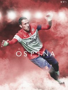 David Ospina - Arsenal Football Ads, Sport Football, Arsenal Soccer, Arsenal Fc, European Football, American Football, Colombia Soccer, Good Soccer Players, Fo Porter