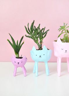 DIY Cat Planters | Design*Sponge