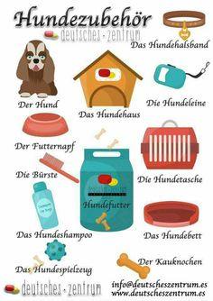 Helpful German vocabulary words perfect for dog lovers! German Grammar, German Words, Study German, German Resources, Deutsch Language, Germany Language, German Language Learning, Spanish Language, Grammar And Vocabulary