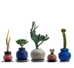 Startling new forms in plants & pots; 'Grafted' - A collab between Japanese plant whisperer Kohei Oda & American ceramicist Adam Silverman yeilds some expressive home & garden styling results Succulent Bonsai, Cacti And Succulents, Planting Succulents, Potted Plants, Indoor Plants, Planting Flowers, Plant Pots, Grafted Cactus, Gardens