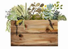 Pintura acuarelaimpresióncajón y plantas de por amberalexander
