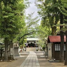 Katori shrine Tokyo