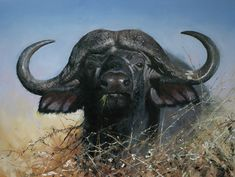 How to master wildlife in oils – part one - How To - Artists & Illustrators - Original art for sale direct from the artist