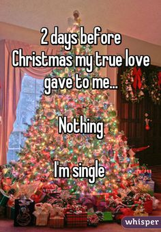 2 days before Christmas my true love gave to me...  Nothing  I'm single