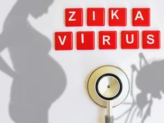 Medscape readers have many questions about Zika virus. CDC provided some answers here.