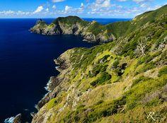 The Hike to Cape Brett. Bay of Islands. NZ