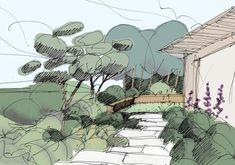 Landscape sketch of a garden