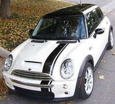 Stripes for the body of a mini cooper