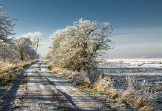 Frosty Day by Daniel Bosma on 500px