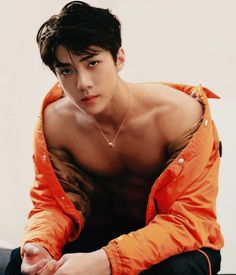 Sehun of EXO. I can see why that SM scout chased him down the street. I would chase him too.