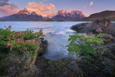 Spring Patagonia, Torres del Paine park, Chile ✯ ωнιмѕу ѕαη∂у