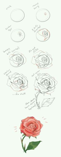 37 Trendy flowers drawing illustration rose - New Tutorial and Ideas Illustration Rose, Art Illustrations, Cool Wall Art, Rose Tutorial, Roses Drawing Tutorial, Diy Tutorial, Flower Drawing Tutorials, Anime Tutorial, Step By Step Drawing
