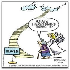 Today on Moderately Confused - Comics by Jeff Stahler Christian Comics, Christian Cartoons, Funny Christian Memes, Christian Humor, Good Cartoons, Funny Cartoons, Funny Comics, Funny Jokes, Hilarious