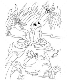 illustration frog in the pond coloring page eps 8 jpg high resolution