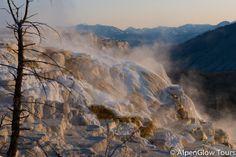 Mammoth Terrace - Yellowstone