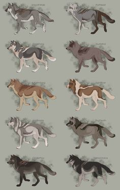 Semi-Realistic Wolf Adoptables Set 12 - OPEN by Therbis on DeviantArt