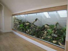 Vivarium by Howard Robinson - terrariums