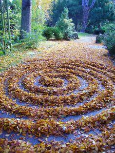 Autumn Leaf Spiral by Roger Dautais