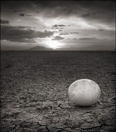Abandoned Ostrich Egg, Amboseli 2007 Nick Brandt