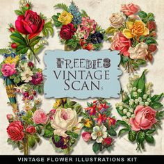 Freebies Vintage Floral Vignettes:Far Far Hill - Free database of digital illustrations and papers Free Digital Scrapbooking, Vintage Wrapping Paper, Vintage Paper, Illustration Blume, Digital Illustration, Vintage Flowers, Vintage Floral, Digital Paper Freebie, Decoupage Printables