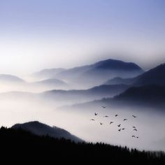Misty mountains.  Earth meets sky.