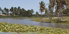 Pacatuba, o Pantanal sergipano