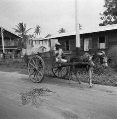 Karreman en ezelskar, ca. 1940