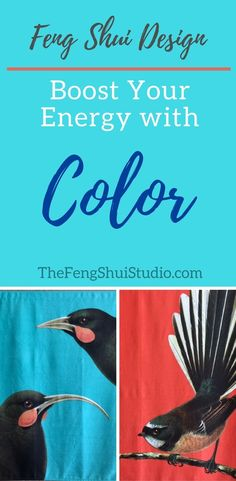 Feng Shui fr color go together. See how it enhances the energy of my Feng Shui house rencontré color Feng Shui Basics, Feng Shui Rules, Feng Shui Items, Feng Shui Principles, Feng Shui Art, Feng Shui Energy, Feng Shui Studio, Feng Shui House, Jardin Feng Shui