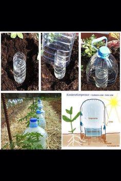 Façon de garder la terre humide