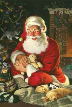 Santa with sleepy pups and kitty