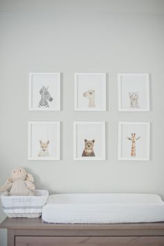 Organized pictures...... Soft animal prints above the changing table