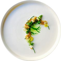 65.2k Followers, 555 Following, 576 Posts - See Instagram photos and videos from Marco Tola Chef (@marco_tola_chef)