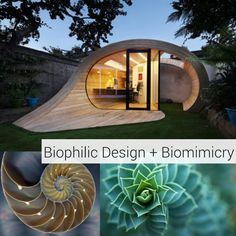 Image Result For Concept Product Design Biomimicry