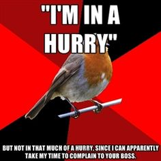 Retail Robin - Im in a hurry but not in that much of a hurry, since i can apparently take my time to complain to your boss.