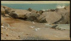 Learn more about Rocky Coast and Gulls Winslow Homer - oil artwork, painted by one of the most celebrated masters in the history of art. Whistler, Art Painting Gallery, Art Gallery, Winslow Homer Paintings, Beneath The Sea, Splendour In The Grass, Museum Of Fine Arts, American Artists, Canvas Art